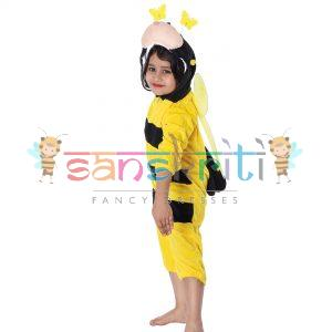 Honey Bee Fancy Dress
