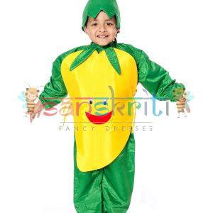Mango Fancy Dress