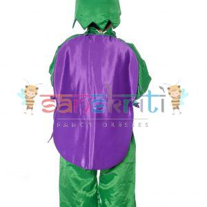 Brinjal Fancy Dress