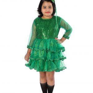 Frock Western Dance Fancy Dress Costume