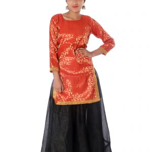 contemporary and indo western fancy dress